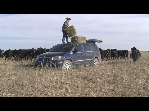 Ranchin' In My Van   (Camila Cabello