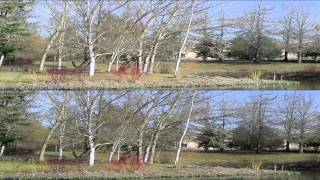 Nikon 1 J1 and J2 video test in 3D video YT3D