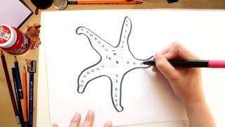 como dibujar una estrella de mar dibujos de verano