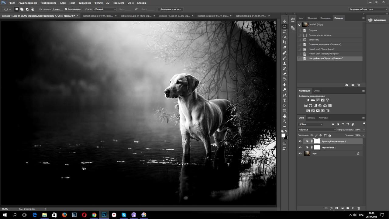 Как сделать красивую черно белую фотографию в photoshop ...