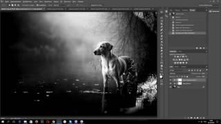 Как сделать красивую черно белую фотографию в photoshop
