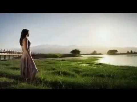 Aldo Monge - La Tristeza de mi mujer.mpg