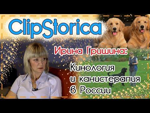 Кинология и канистерапия в России | Ирина Гришина | #ClipStorica