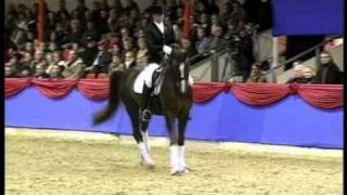 BELISSIMO M: Rheinland record dressage stallion, www.equine-evolution.com stallone da monta