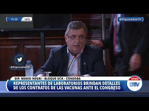 VIDEOCONFERENCIA EN VIVO: H. Cámara de Diputados de la Nación - 8 de junio de 2021