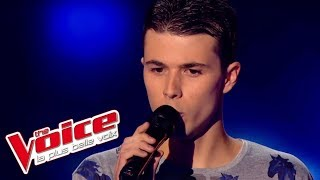 The Voice 2014│Ayrton Paris - Les Lacs du Connemara (Michel Sardou)│Blind audition