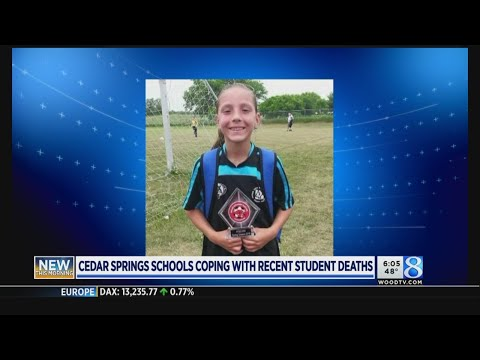 Cedar Springs school coping with recent student deaths