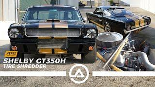 Shelby GT350 Hertz Rent-a-Racer | Original Vintage Race Car Driven Hard