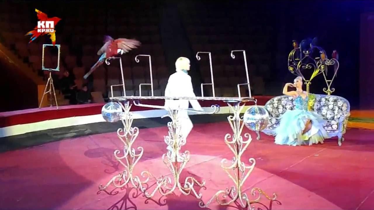музея кировский цирк арлекино фото пансионате, для