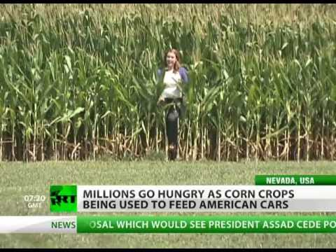 Food for Fuel: An 'answer' for world hunger & high prices