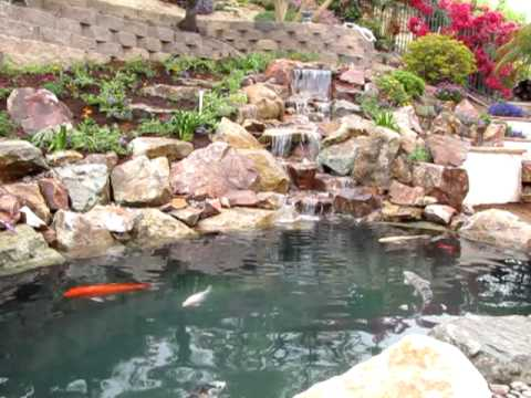 Koi pond and natural rock waterfall in la costa ca by san for Koi fish pond rocks