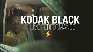 Kodak Black - Vlog & Live Performance Video