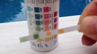 Test Ph Alkalinity Chlorine Cyanuric Acid In Swimming Pool With Test Strips Youtube