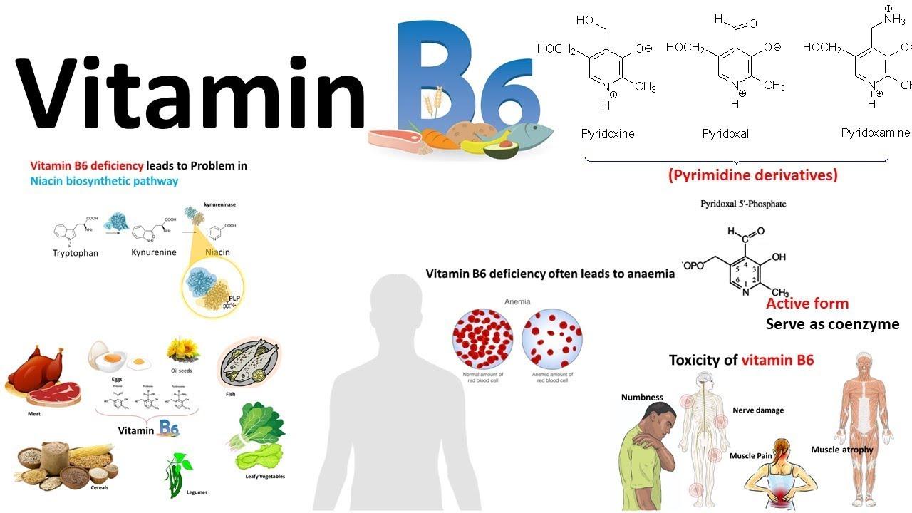 Betegségre utalhat a rossz lehelet - HáziPatika Rossz lehelet a vitaminok szedésekor