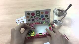 Happy Plant Обзор живой открытки 8 марта (Тюльпаны)