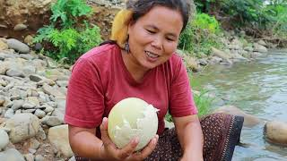 survival in the rainforest-women found 5 ostrich egg for cook -Eating delicious HD