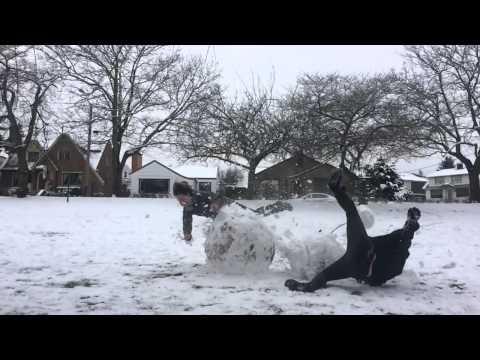 Snowmeggedon