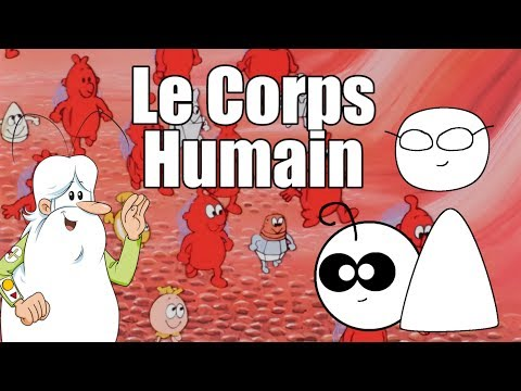 Point Culture : le Corps Humain