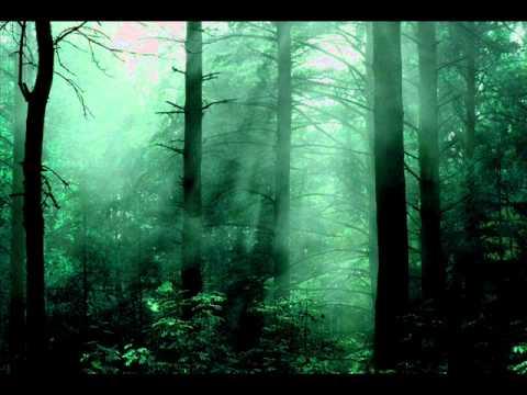 Fulgurum - The Shadow of Death (Cień Śmierci)