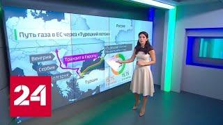 """Болгария планирует достроить ветку """"Турецкого потока"""" в Сербию до начала 2020 года - Россия 24"""