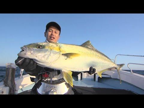 【釣り百景】#238 春のヒラマサはトップで豪快バイト!山口県でキャスティング&ジギング