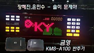 금영 반주기 장혜진,윤민수-술이 문제야 반주