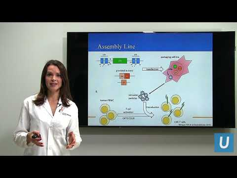 CAR T at UCLA: Driving the Progress of Engineered Cell Therapy   UCLA Health