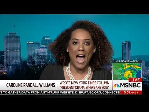 Caroline Randall Williams - MSNBC - Morning Joe - 8-25-2017