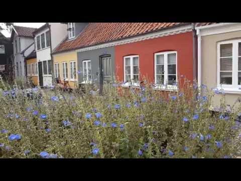 Denmark Daydream