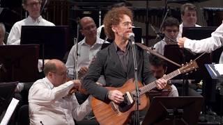 Orquestra Petrobras Sinfônica e Nando Reis - Relicário