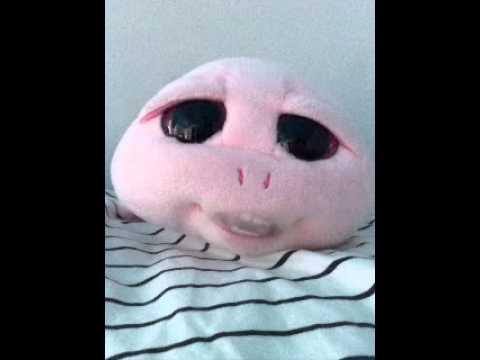 Clip dr le de toutou gros yeux qui parle youtube - Jeux de toutou a gros yeux ...