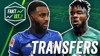 Rose zu Schalke, Cornet zum VfL Wolfsburg? Fakt ist.! Transfer Spezial Sommerpause 2018