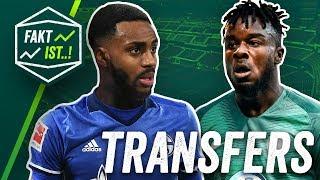 Rose zu Schalke, Cornet zum VfL Wolfsburg? Fakt ist..! Transfer Spezial Sommerpause 2018