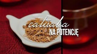 herbata na potencję)