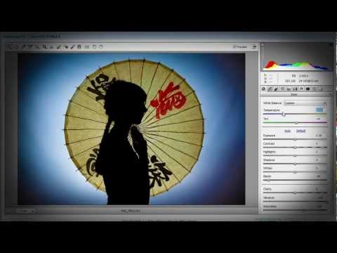 Shooting a Silhouette Ep 104: Take & Make Great Photography with Gavin Hoey: Adorama Photography TV