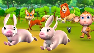 The Lion & Two Rabbits 3D Animated Hindi Moral Stories for Kids शेर और दो खरगोश कहानी Fairy Tales