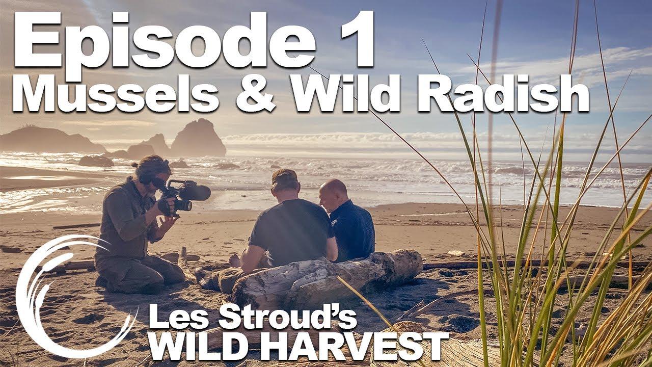 Download Survivorman   Wild Harvest   Season 1   Episode 1   Mussels & Wild Radish   Les Stroud