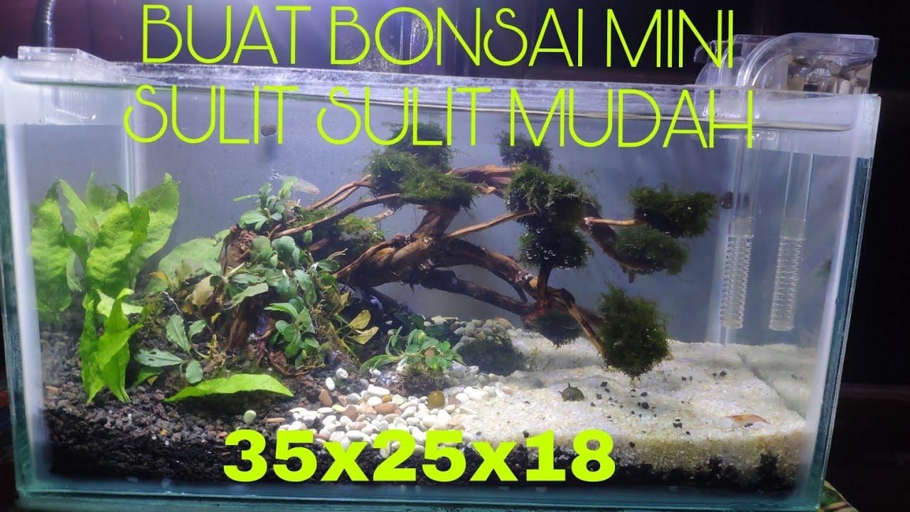 CARA MEMBUAT BONSAI MINI AQUASCAPE TANK 35x25x18 (part1 ...