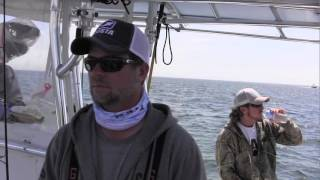Shark research off the Mass. coast with OCEARCH