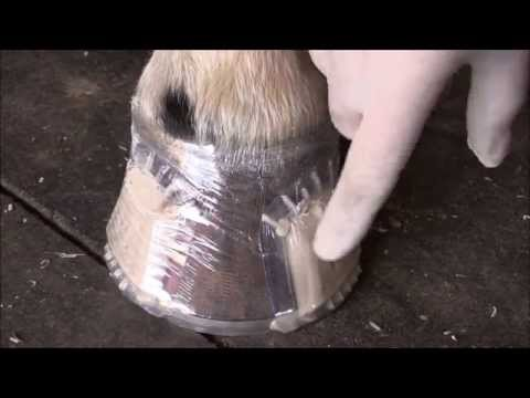 Using Stretch Wrap: Pat's Tips & Tricks for Hanton Glue-On Horseshoes