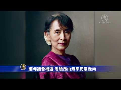 缅甸议会补选 考验昂山素季民意走向