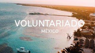 COMO VIAJAR CASI GRATIS POR EL MUNDO || Voluntariado con @worldpackers #1