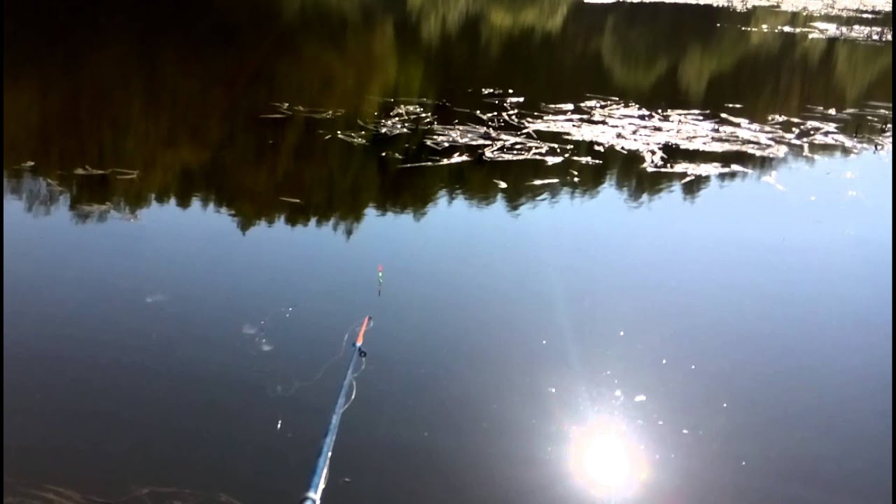 Лов карася в татарстане видео