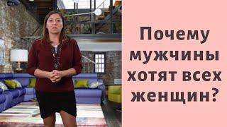 Почему мужчины хотят всех женщин Анна Лукьянова