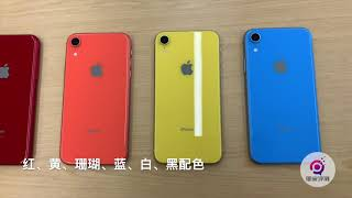 iPhone XR 上手:屏幕黑边没想象中那么宽   凰家现场