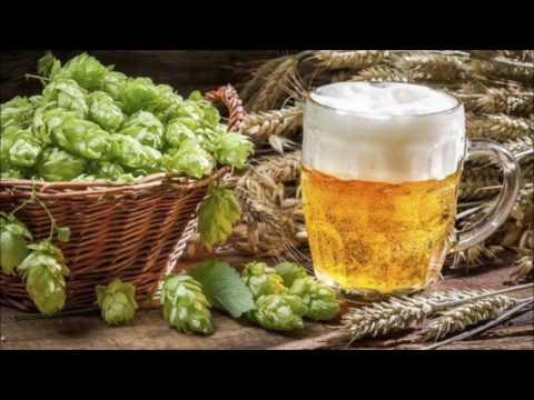 IPA (India Pale Ale) explicada en 4 min.