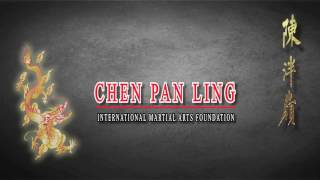 """NEW"" Chen Pan Ling Authentic Tai Chi Chuan DVD"