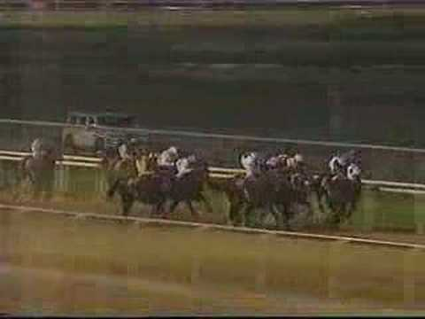 1996 Dubai World Cup (Jim McGrath commentary)