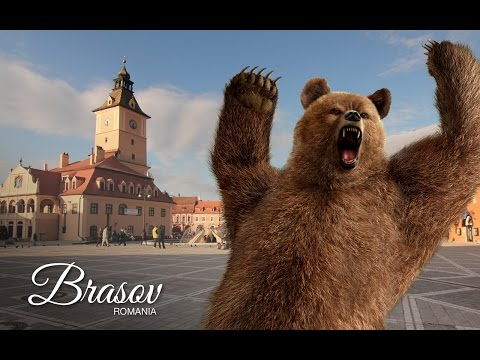 One Week in BRASOV, ROMANIA: Bike Rides, Bears and a Crazy Pigeon - EP. #14