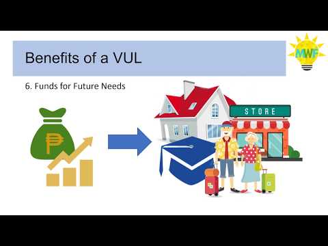 What Is A VUL?
